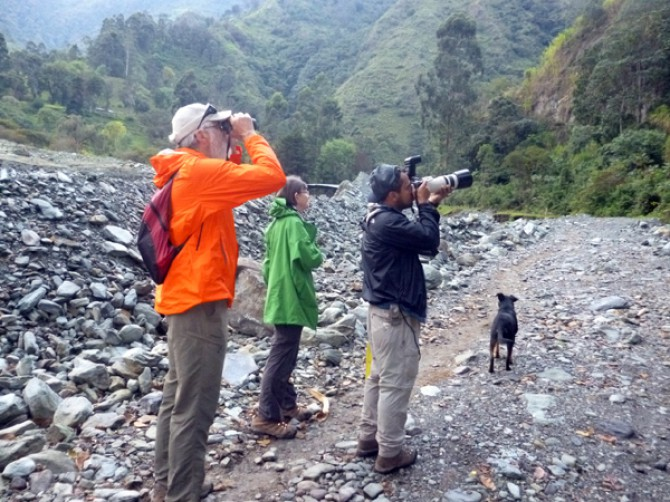 birdwatching-in-colombia-tours